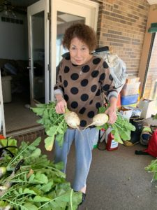 Korean Turnips October 18 2019
